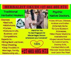 HERBALIST WITH DISTANCE HEALING POWER BRING BACK LOST LOVER COURT CASES E.T.C +27603405873