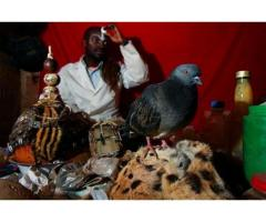 POWERFUL AND SPIRITUAL HERBALIST HEALER AND SPELLS CASTER,  AND MONEY SPELLS!! +27710730730656