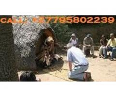 ''+27795802239'' BEST TRADITIONAL HEALER / SANGOMA in Tembisa, Reiger Park, Germiston